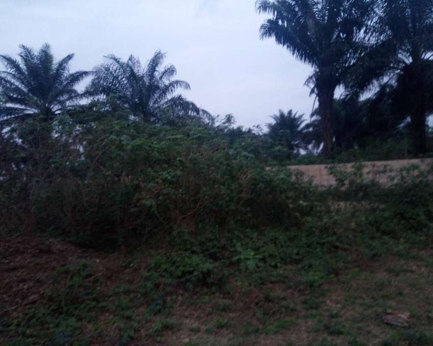 Commercial Land for sale. 0