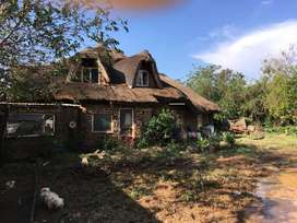 Poultry and pig farm for sale.