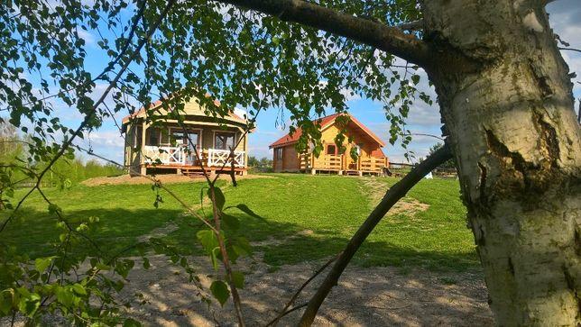 domki domek drewniany okolice Mikołajki jezioro Głębokie sprzęt wodny Mikołajki - image 2