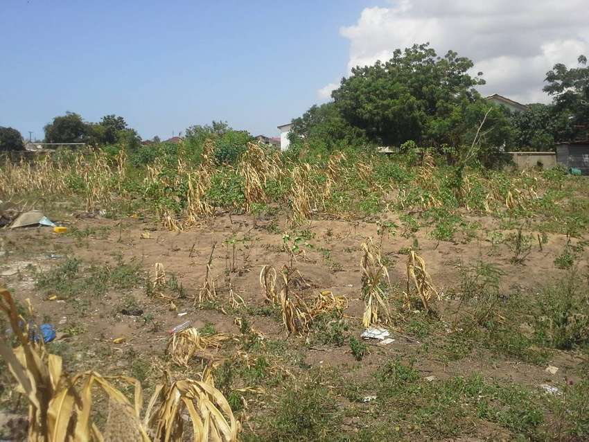 2.6 acre land with warehouse and offices is up for sale at Taifa 0