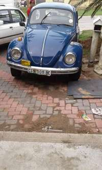Image of Beetle for sale