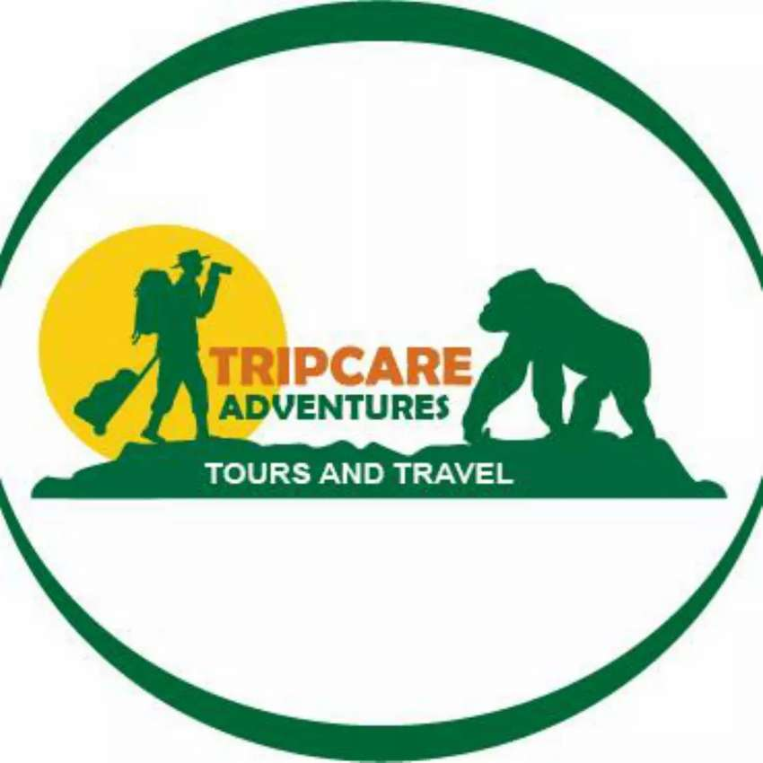 Tours and travel 0
