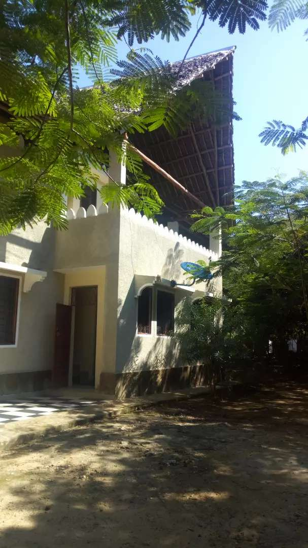 Beautiful forested 4 bedrooms bungalow for holiday rental with pool 0