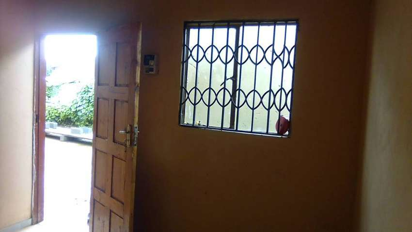 New rooms for Rent in Palm Ridge