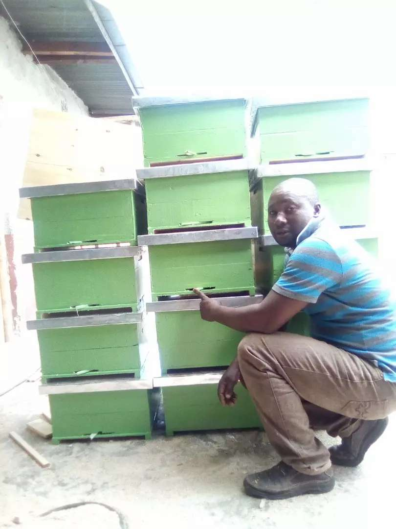 Bee hives for sale and accessories 0