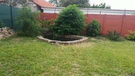 Home  to rent in fourways