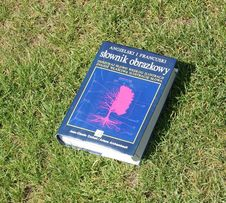 Słownik angielsko-francuski
