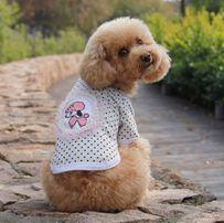 Biały T-shirt w kropki Dobaz roz. S i L dla psa