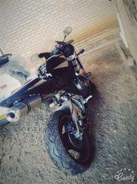 Image of Perfect Honda CBR 600RR for sale
