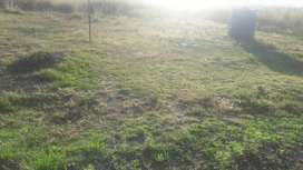 Land for sale in Davol between Bethal and and Ermelo
