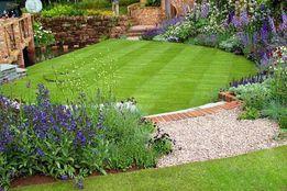 Газонная трава. Парковый газон. Урожай 2018, 100% всхожесть
