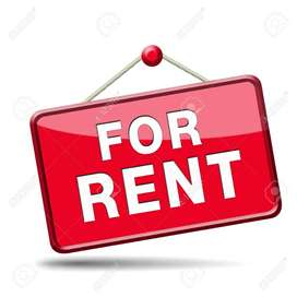 Looking for place to rent