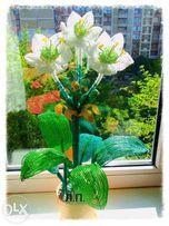 Амазонская лилия или Эухарис , лилии лилия валлота из бисера