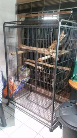 Parrot/Chinchilla cage for Sale