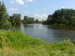 wynajme domek nad rzeka Warta
