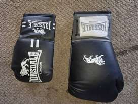 Boxing gloves 2 pairs and 1 protein shaker combo