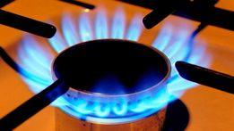 Качественный ремонт газовых колонок и плит