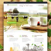 Веб Дизайнер (Интернет-магазин, одностраничник, баннеры, лого и др.)