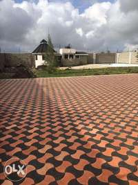Cabro paving work profesionals footpaths compounds and drive ins 0