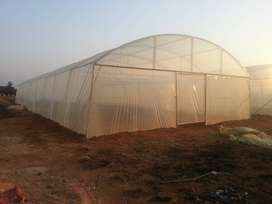 B Grade Greenhouse Tunnels For sale
