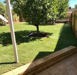 FOR ANY OF YOUR LANDSCAPING ISSUES, CONTACT US NOW. PROBLEM SOLVED