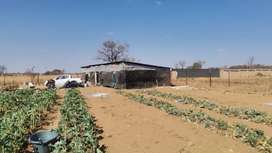 1 Hectare Farm For sale