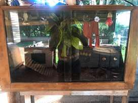Large reptile cage