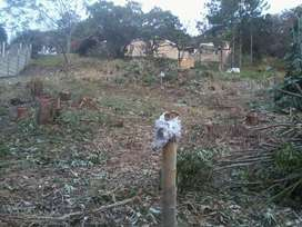 Plot in Uvongo, Margate