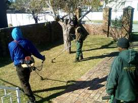 I provide top garden service for residential and commercial industry