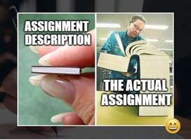 Assignment, project and test tutor