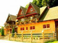 KORBIELÓW - WILLA 7- dom do wynajęcia-noclegi,urlop,ferie,zima,góry!
