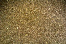 Семена табака , сорт Верджиния Голд