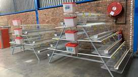 Layer Cages/Battery Cages