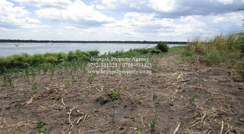 50 ACRES OF LAND FOR SALE ALONG THE NILE AT NAMASAGALI KAMULI 0