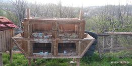 Продам клітки для кроликів