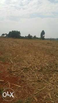 17 acres at maili nne with title 2.6km from tarmac 0