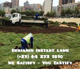 Benjamin instant lawn supply and Landscaping