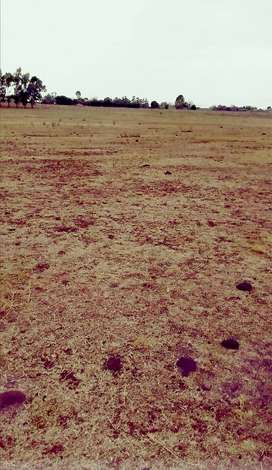 Open Land for Sale