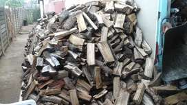 Dry wood for multi purposes use for sale.