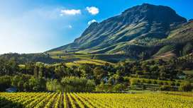 Cape Winelands Farm Wanted