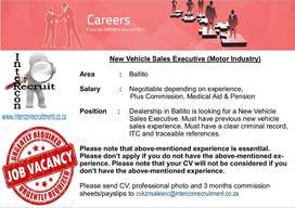 New Vehicle Sales Executive (Motor Industry) Ballito
