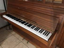 EDE RIPPEN Holland Piano