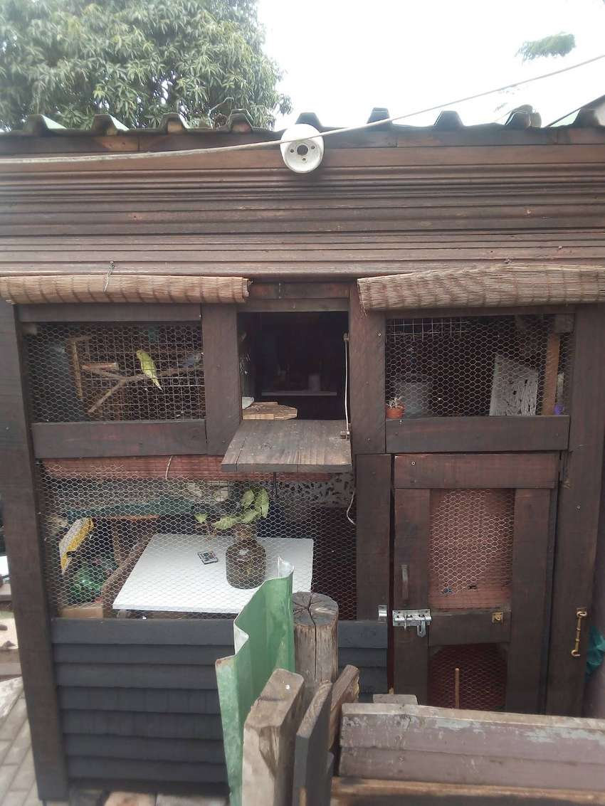 Wooden pigeon loft house for sale 0