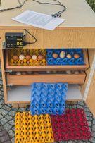 Inkubator PÓŁAUTOMATYCZNY 120-180 JAJ nowy wylegarka 2 szuflady