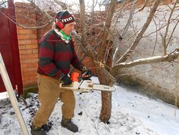 Обрезка сада, Спил аварийных веток, Спил дерева, Обрезка деревьев