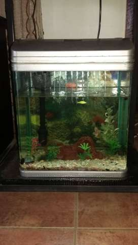 4 fish tanks for sale