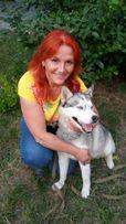 Кинолог. Дрессировка и коррекция поведения собак, Одесса