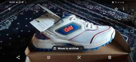 GM Apex Allrounder cricket shoes