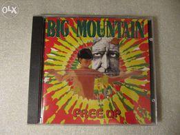 Фирменный диск Big Mountain Free Up 97