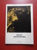 Jacek Wierzbicki - Drzwi gnieźnieńskie, seria mała encyklopedia sztuki